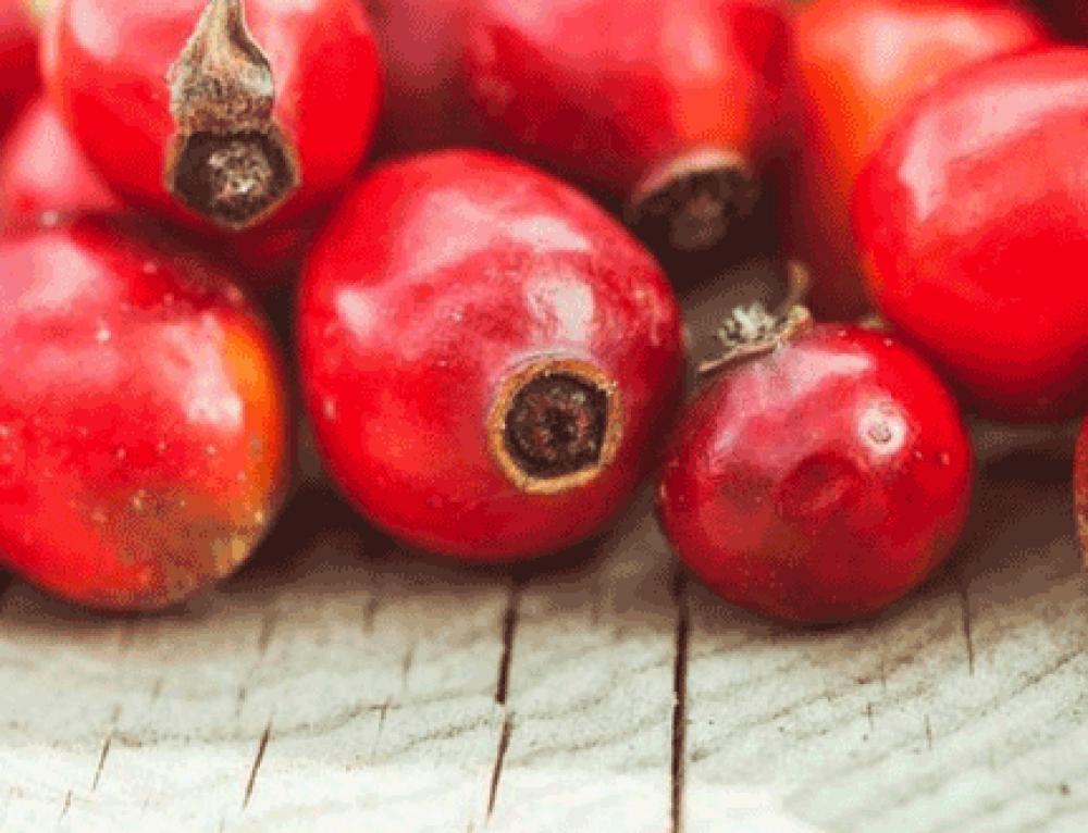 4 propiedades y usos del aceite de rosa mosqueta en cosmética